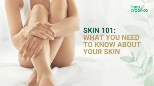 Skin 101 | What You Need To Know About Your Skin